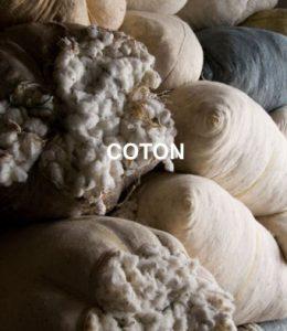 Veja, coton